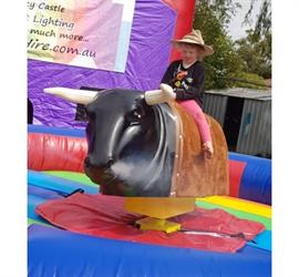 Mechanical Bucking Bull